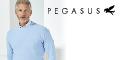 Pegasus Menswear promo code